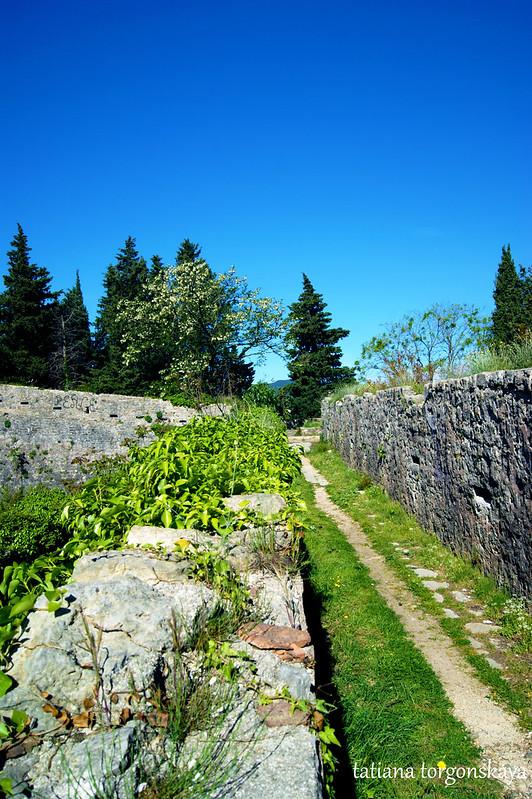 Дорога на стенах