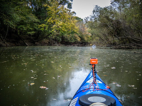 Savannah River from Stokes Bluff with LCU Nov 7, 2014, 4-18 PM Nov 8, 2014, 10-31 AM