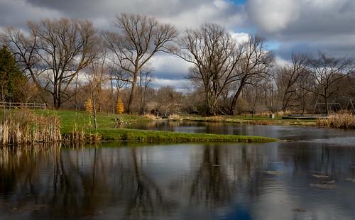 pond localpark