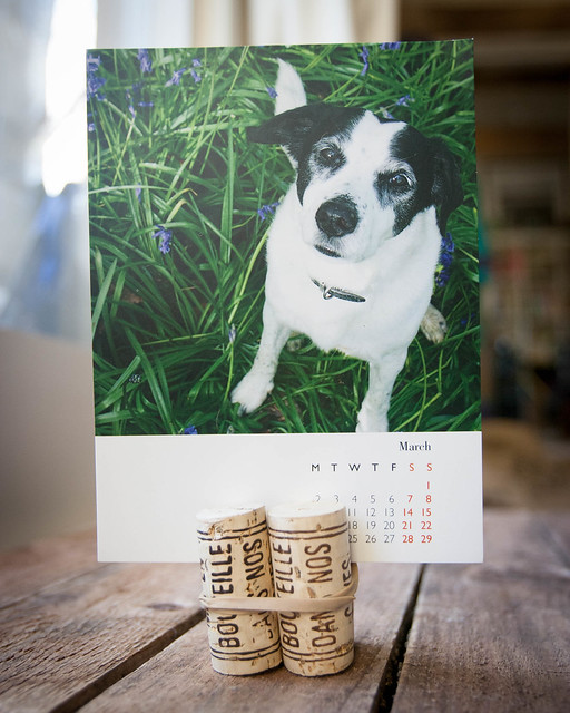 Rocky Calendar