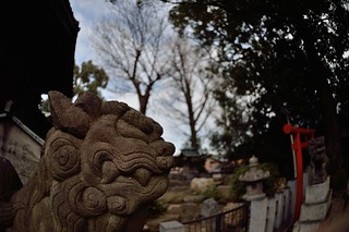 """Komainu"" of Hitsuji Shinto Shrine 2014/12."