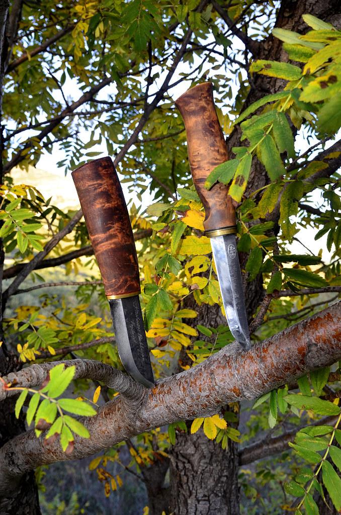 Des traces de couteaux dans les bois 15596013687_8fb3c1427d_b