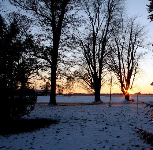 338/365 Winter Bling