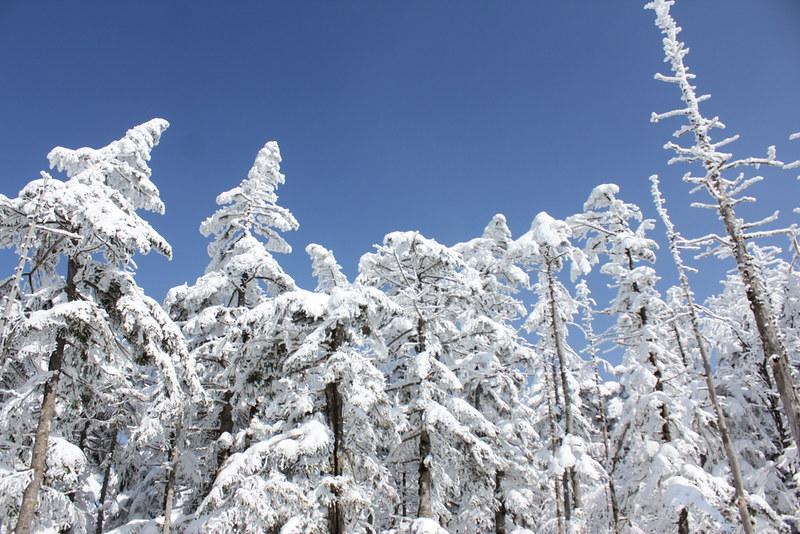 2014-03-09_00097_北横岳