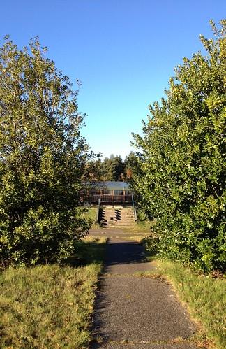 Autumn-Walk-6