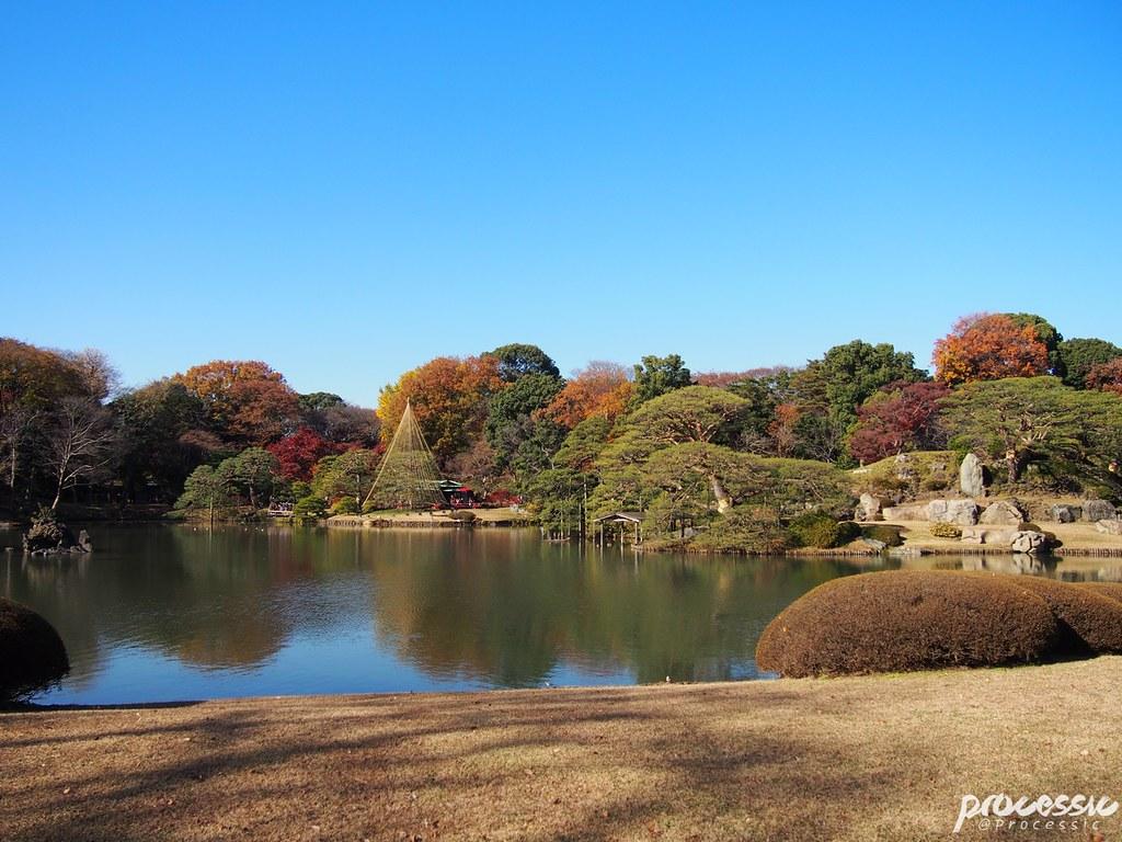 Rikugi-en (Rikugien Garden) TOKYO_0008
