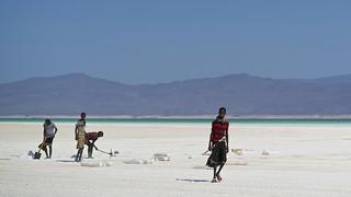 Djibouti workers extracting salt, Assal Lake, Djibouti