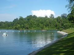 MacRitchie Reservoir - 125