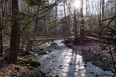 On the Buckeye Trail :: Girdled Rd reservation