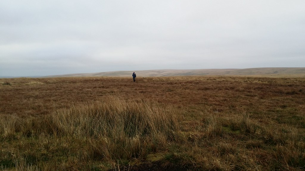 Another lone figure on the moor #dartmoor #sh
