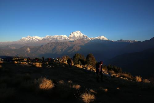 nepal sunrise himalayas poonhill punhill dhaulagirirange