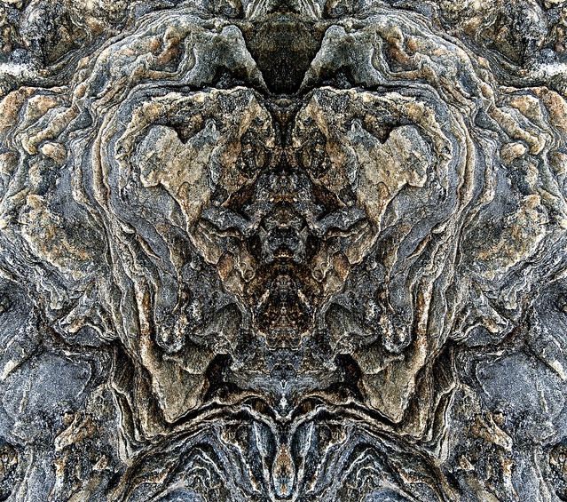 rocky Bruin