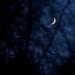 Crescent moon, Christmas night