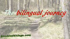 The bilingual Journey