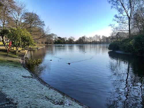 Moseley - Swanhurst Park