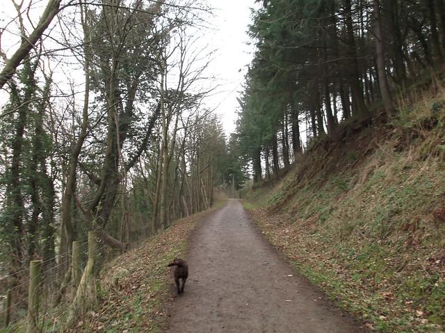 breidden hill 004