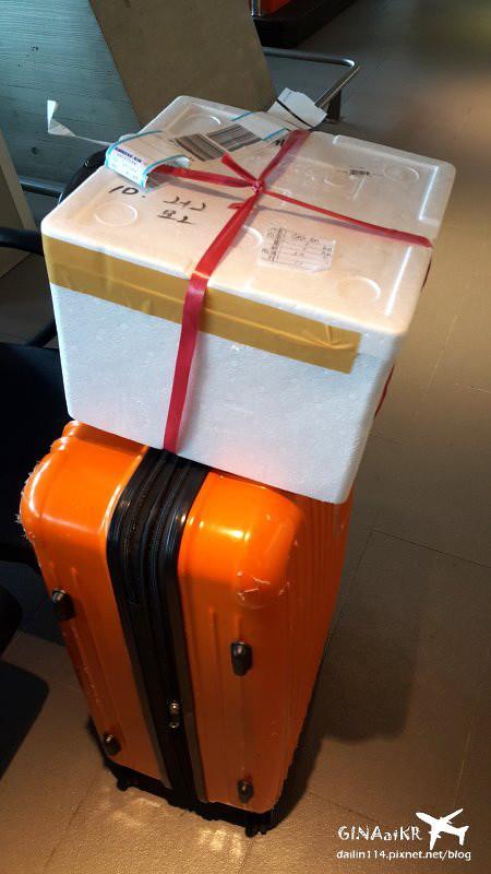 【濟州島自由行】復興航空GE866/GE865(已停飛)超早班機直飛韓國濟州島(附小短片*5) @GINA環球旅行生活|不會韓文也可以去韓國 🇹🇼