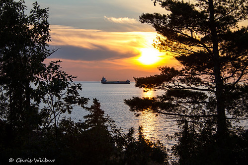 trees sunset summer lake ontario canada silhouette superior cap gros algoma