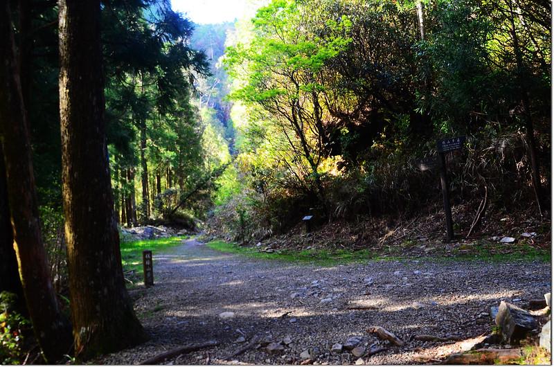榛山環形步道岔路