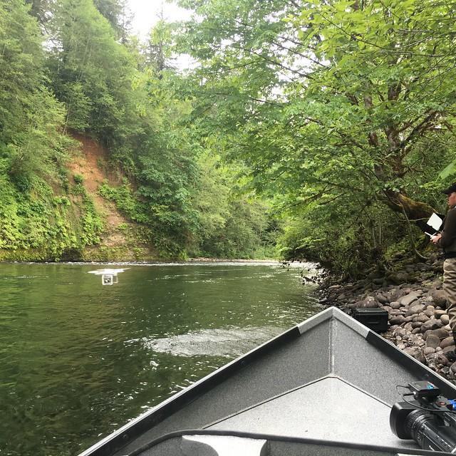 """McKenzie river """"a river for life"""""""