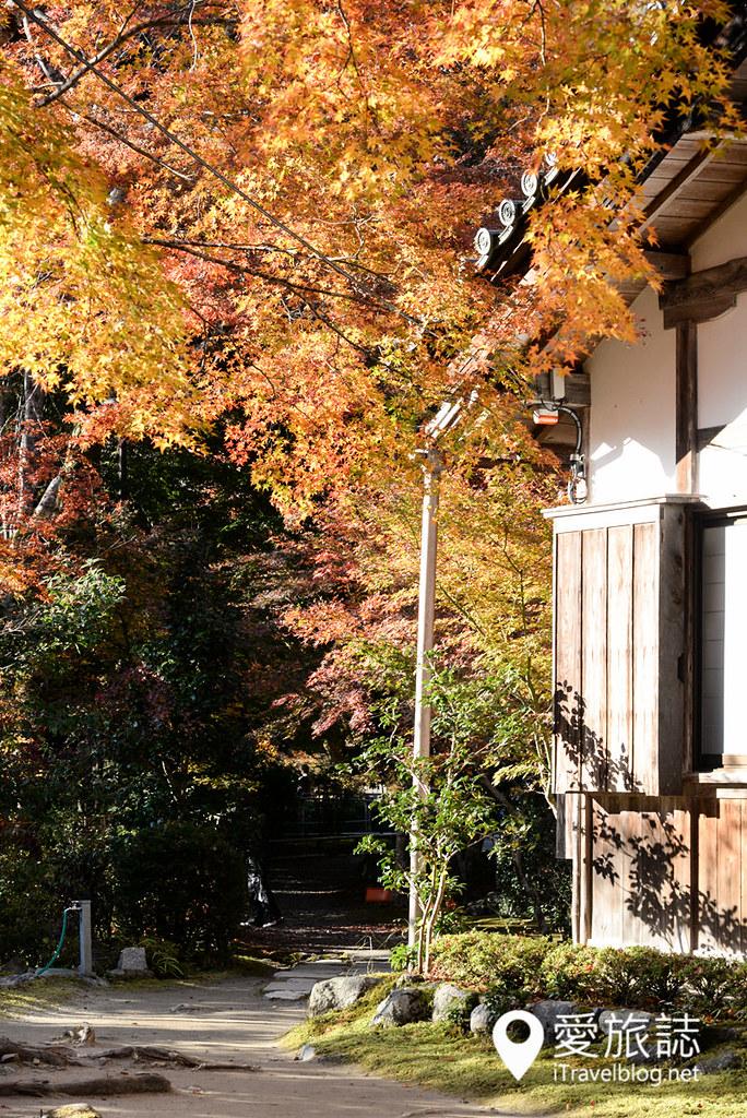 京都赏枫景点 高雄西明寺 25