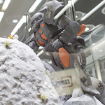 GBWC2014_World_representative_exhibitions-195