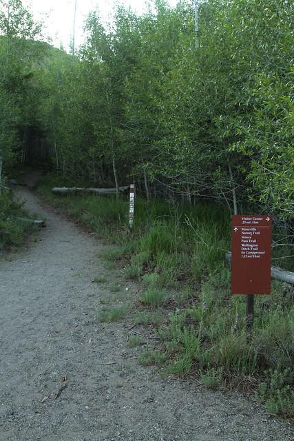 Montville Trail