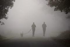 Posbank in de mist