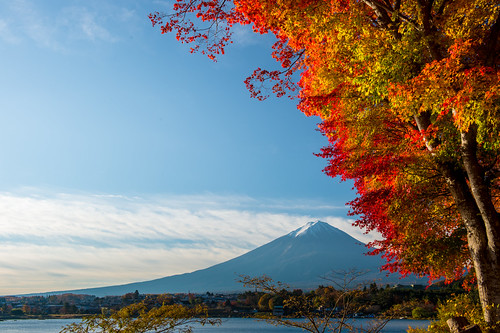 november autumn japan fuji 日本 紅葉 crazyshin yamanashi 2014 河口湖 山梨県 南都留郡 afsnikkor2470mmf28ged order500 nikond4s 20141118ds10833