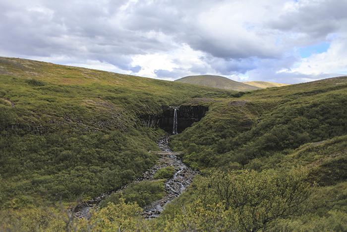 Iceland_Spiegeleule_August2014 053
