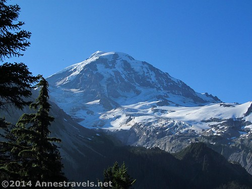 Mt. Rainier from Eagle Cliff Viewpoint, Mt. Rainier National Park, Washington