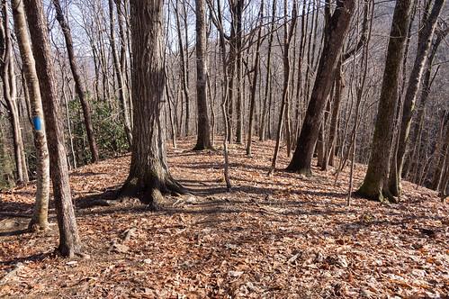 Tom Miller Trail - 4