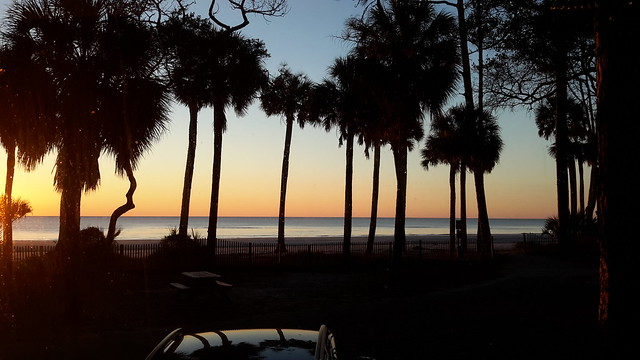 View Toad, Charley, and we awoke to in Hunting Island State Park Campground
