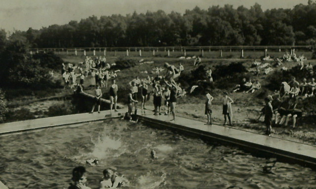 Gosforth Park