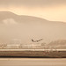 the early flight by angeloangelo