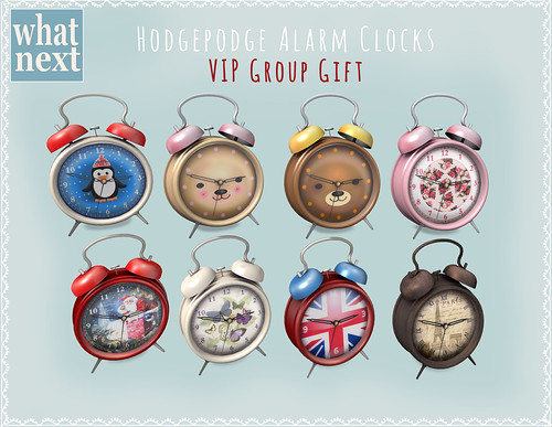 {what next} Hodgepodge Alarm Clocks VIP Group Gift
