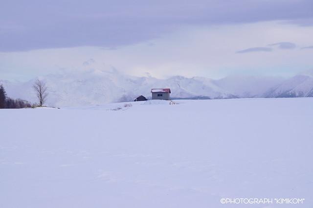 二つの小屋の丘2