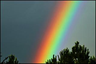 Lluvia y sol= Arco iris