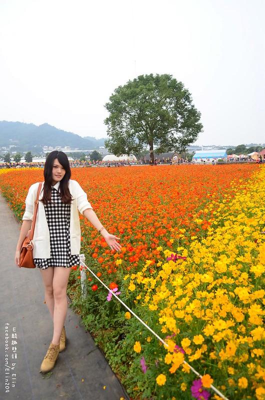 花 (37)