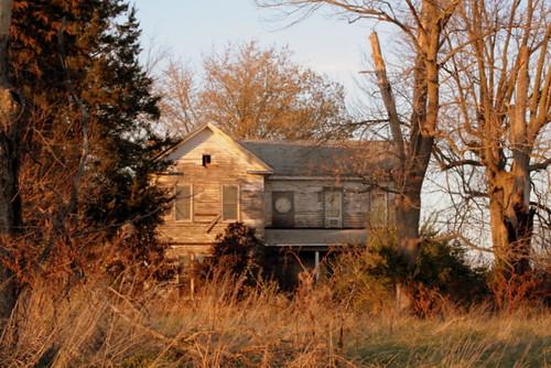 298/365 Neighbor's House