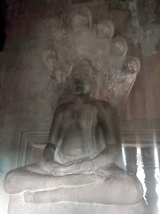 8020 Buddha protected by Shiva's Snake (ヴァースキ竜)