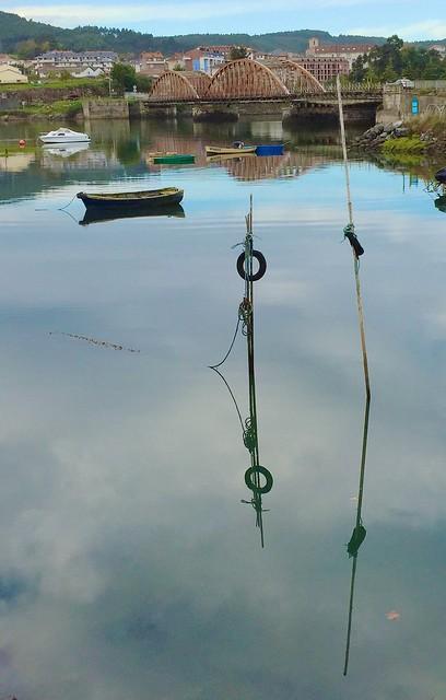 Morning Walk Reflections