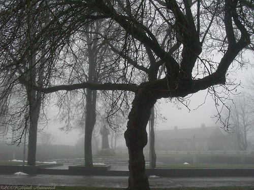park november autumn sculpture mist tree nature silhouette landscape cross belarus adammickiewicz novogrudok navahrudak motherlandbelarus pensiveautumn