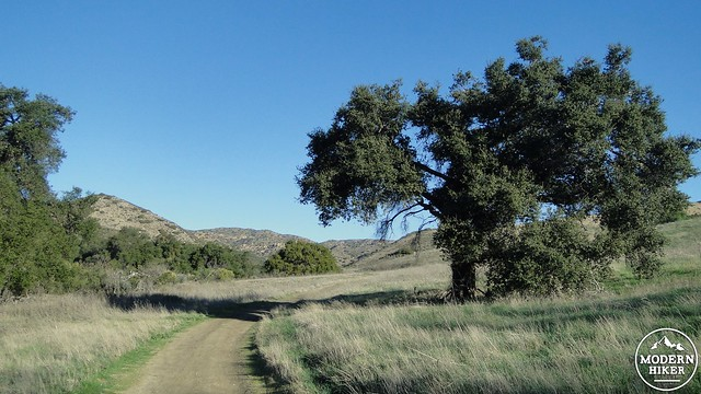 Cheeseboro Canyon 12