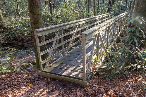 Coldspring Branch stream crossing #2
