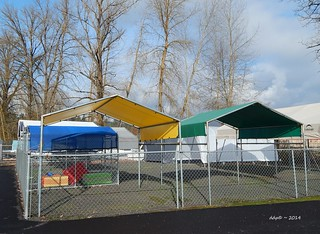 Colorful Tent Canopy Shelter Type Things ???