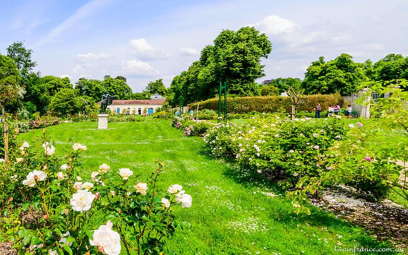 Joséphine's garden at Malmaison