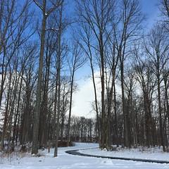 Took a few #winterwonderland photos this morning. #nofilter #Brambleton #virginia #loveva @visitvirginia @visitloudoun #loudoun #trails #thedayafter