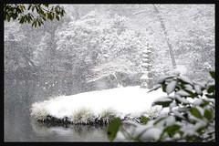 日本京都-金閣寺-雪.73