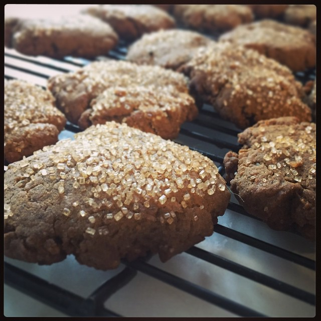 First out of the oven: ginger molasses from @isachandra's #vegan cookies book. #taralovesChristmas